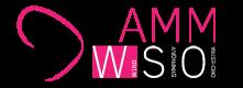 Camm WSO Logo